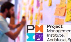 PMI Andalusia Spain Chapter Agilidad a escala, cómo expandir las metodologías ágiles a toda la empresa y no morir en el intento-Reunión mensual