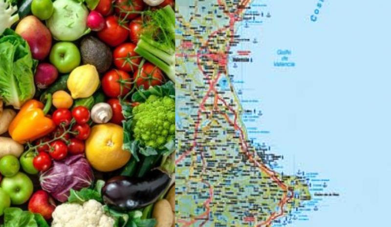 Así ha sido el año previo a la pandemia para el sector agroalimentario de Valencia: cítricos y hortalizas