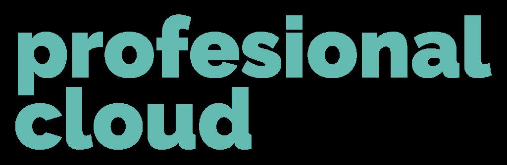 AUTOMATIZACIÓN DE PROCESOS DE NEGOCIOS Y PLANIFICACIÓN DE RECURSOS EMPRESARIALES – ProfesionalCloud – Silver Partner Microsoft España