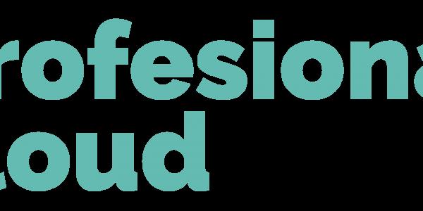AUTOMATIZACIÓN DE PROCESOS DE NEGOCIOS Y PLANIFICACIÓN DE RECURSOS EMPRESARIALES - ProfesionalCloud – Silver Partner Microsoft España