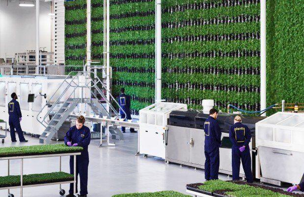 Innovación en la construcción: invernaderos verticales en el interior de edificios